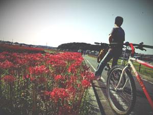 矢勝川堤防から権現山(右奥)を臨む - 彼岸花まつり