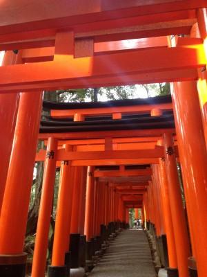 年に1度の日本伝統の体験を積み重ねて育みたい豊かな国際人